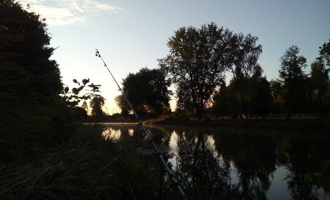 Вечерняя рыбалка на донку