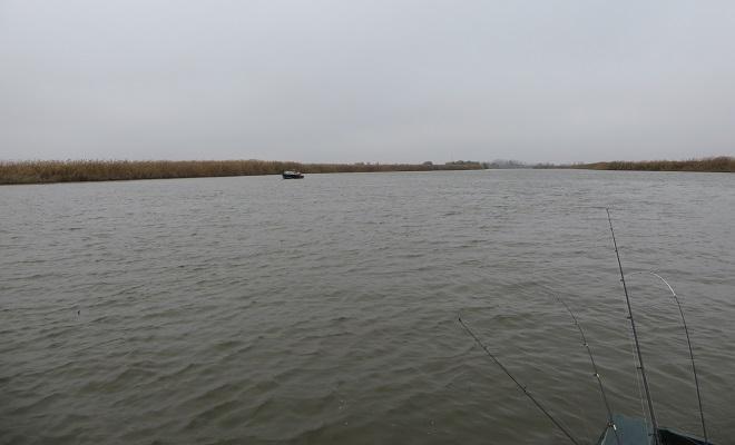 Река, спиннинги в лодке