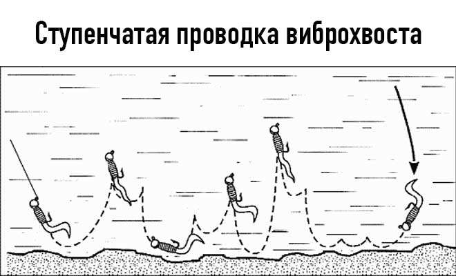 Схема ступенчатой проводки виброхвоста
