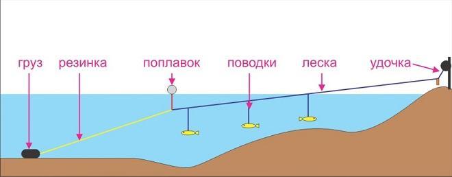 Схема донки с резинкой при ловле на живца