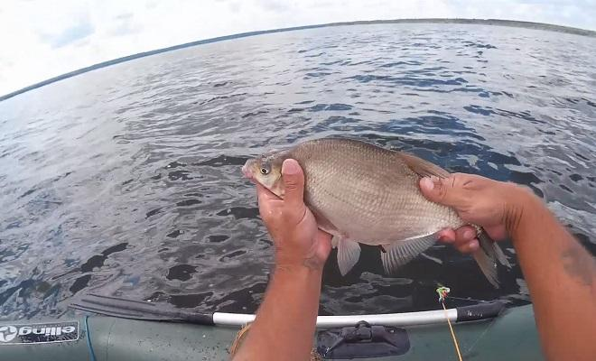 Пойманный лещ с лодки