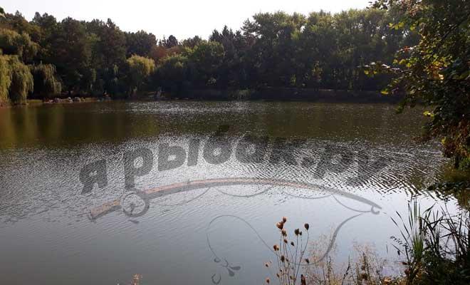 Озеро в начале сентября